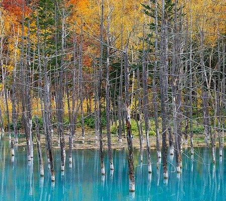 blue-pond-hokkaido