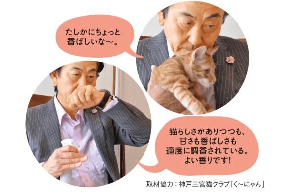 Jepang Bikin Parfum Aroma Jidat Kucing