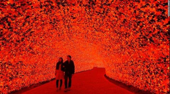 Nabana No Sato : Festival Lampu Led Warna-Warni di Jepang