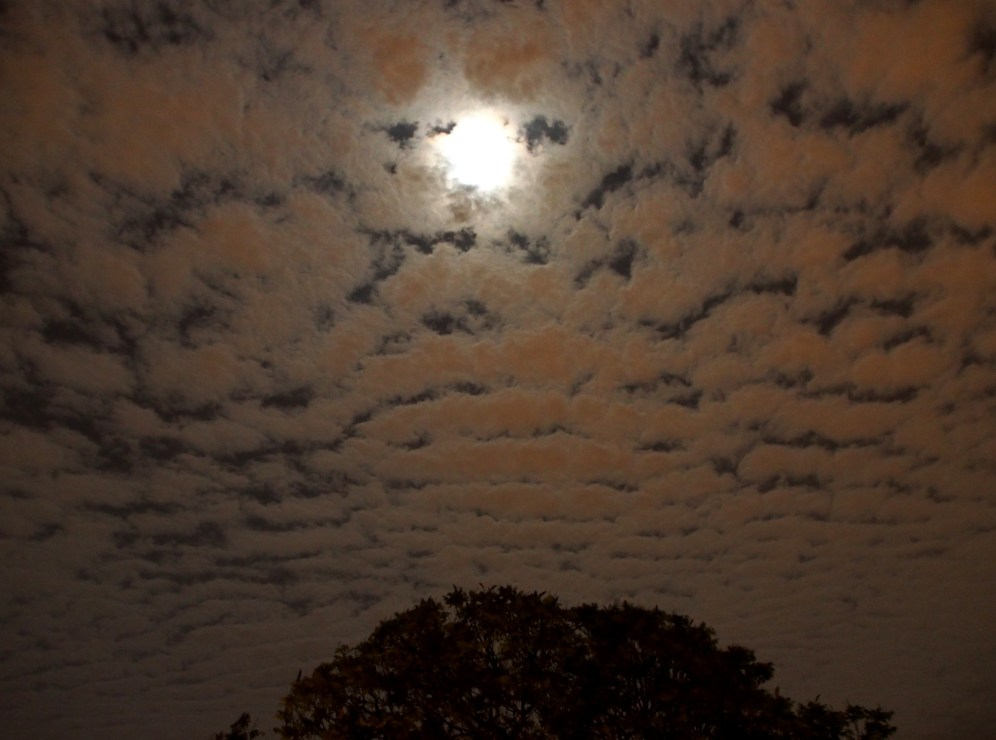 Clouds & The Moon