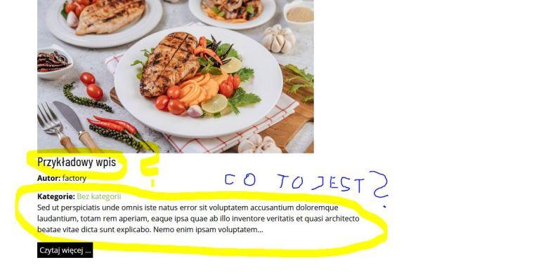 Twórcy tej strony nawet nie chciało sie usunąć tekstu przykładowego z gotowej strony klienta