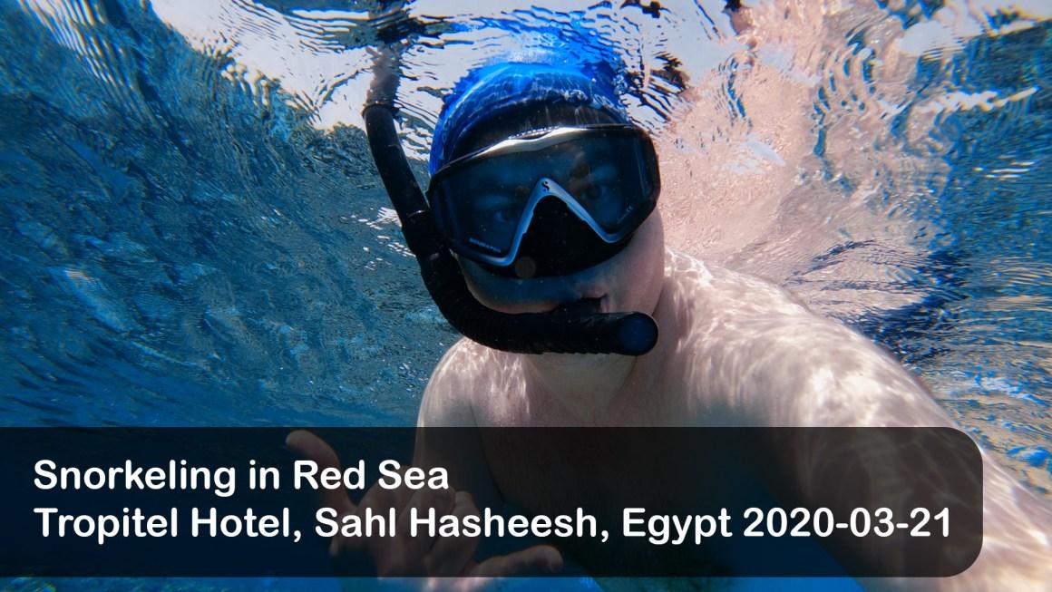 🇪🇬 Египет: 🤿 Снорклинг возле Тропитела, Сахл Хашиш