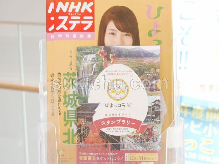 茨城県庁ひよっこ展示
