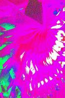pink and aqua (Large)