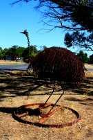 emu has landed