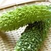 家庭菜園(野菜栽培) 一石二鳥・三鳥の魅力ある趣味