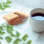 コーヒー デリケートな飲み物の知識や技法を学ぶ