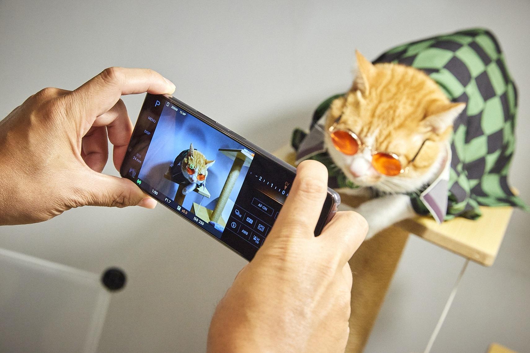 Xperia 1 II帶來動物眼即時眼部追蹤對焦功能,搭配高速連拍,輕鬆拍下寵物玩耍的瞬間,甚至連毛流都能清晰捕捉!(5)