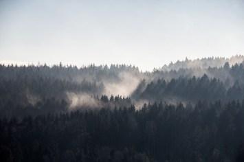 Sachsen, Erzgebirge, Thalheim, 2015
