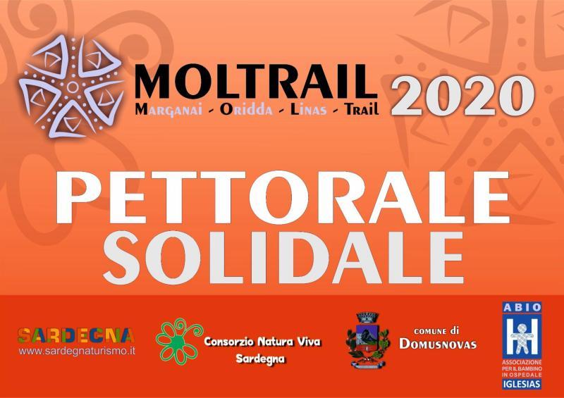008 2009 Moltrail solidale