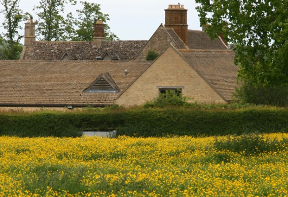 Madam's Close and Sulgrave Manor - nature provides the floral setting.