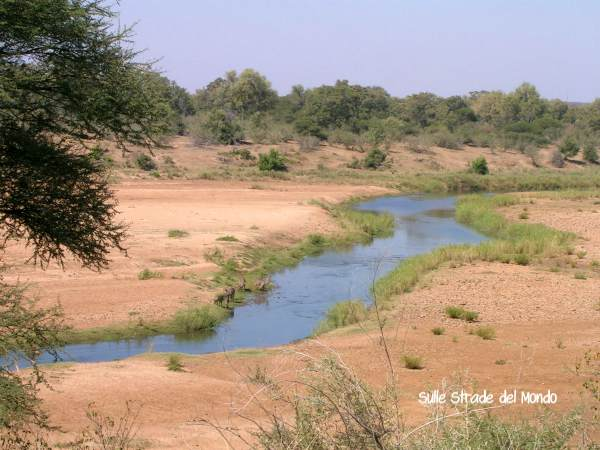 Panorama Kruger