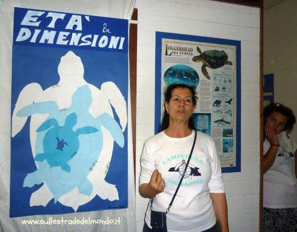 Lampedusa, centro recupero e la salvaguardia della tartaruga