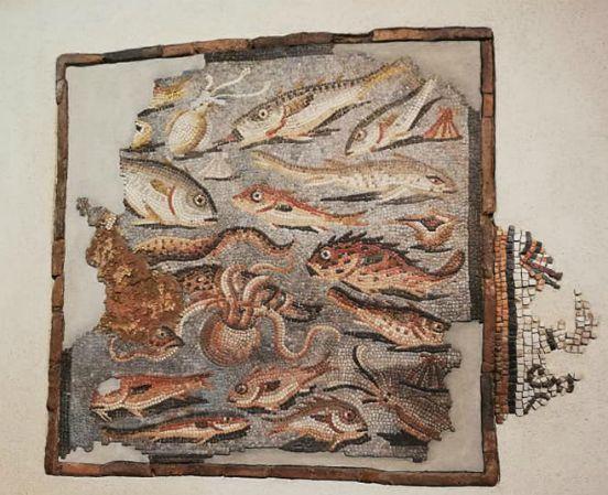 Mosaico pesci Aquileia