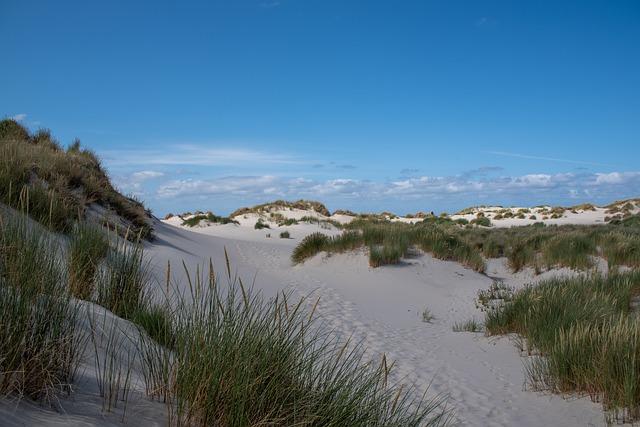 Camminare sulle dune di Terschelling: