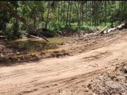 Warga Resah, PT Tambang Bumi Sulawesi di Kabaena Gunakan Jalan Usaha Tani