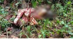 Polisi Ungkap Ciri-ciri Mayat di Hutan Wolasi, Ada yang Tahu?