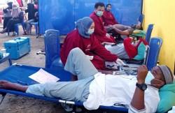Hari Donor Darah Sedunia, PMI Konawe Kumpulkan Puluhan Kantong Darah dari Pendonor