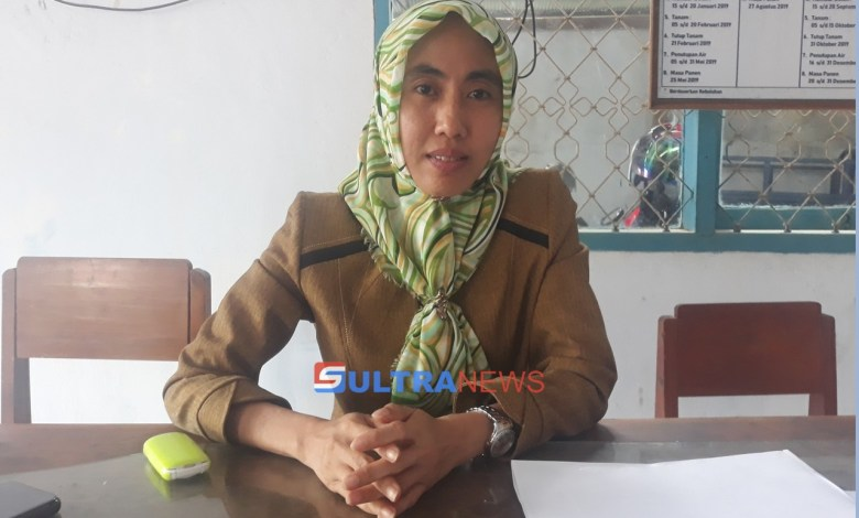 Kabid-SDA-Noor-Jannah-ST.-M.Si_.jpg