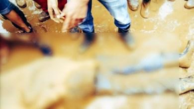 Photo of Pekerja Lokal Tewas Terlindas Dump Truk di PT VDNI