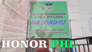 honor PHL Konkep