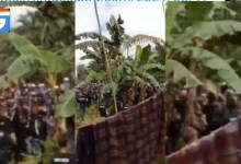 Ribuan Massa Aksi Ormas Tawon, Masuki Kawasan Mega Industri di Morosi