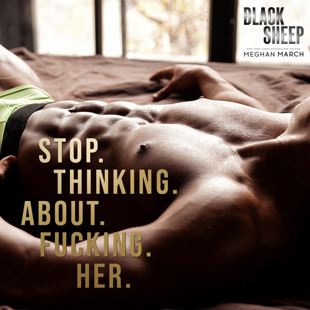 Black Sheep by Meghan March Teaser 2