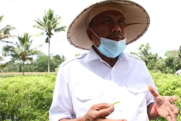 Gubernur Olly Berhasil Lobi Pemerintah Pusat, Tarif Efektif PPN Produk Pertanian Turun Menjadi 1 Persen