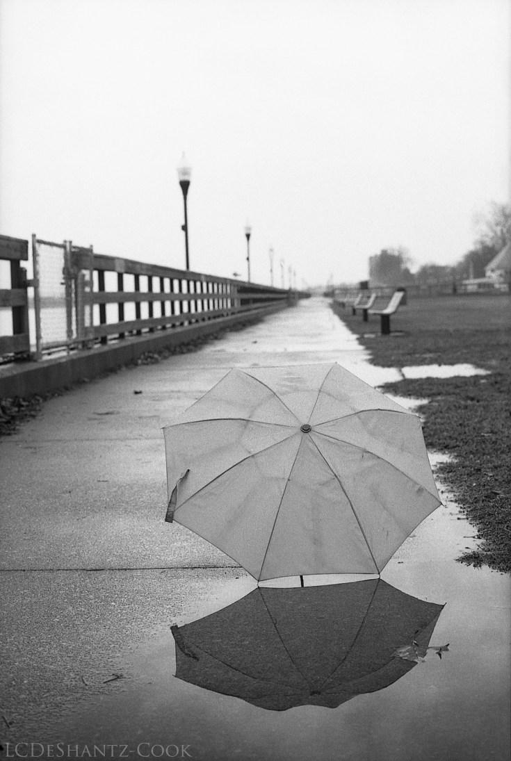 umbrella, riverfront, rain, Minolta SRT 102 and Lomography Earl Gray