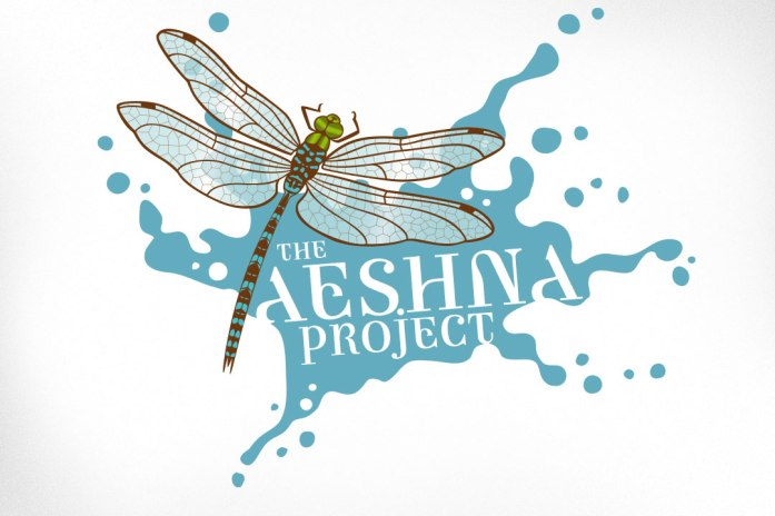 """Logo designed for a client in the field of human development – helping individuals and organizations to improve themselves to their greatest capacity. The dragonfly image was chosen to represent the duality of the ancient combined with change. Requested brand character included keywords """"lighthearted, spacious, deeply purposeful""""."""