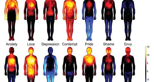 ¿Dónde guardas tu emoción?