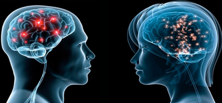 Tu cerebro refleja tu sexo: No somos iguales