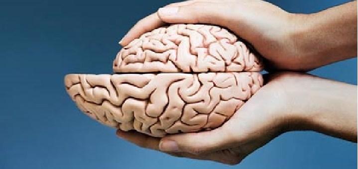 Aspectos neurológicos del envejecimiento (I)