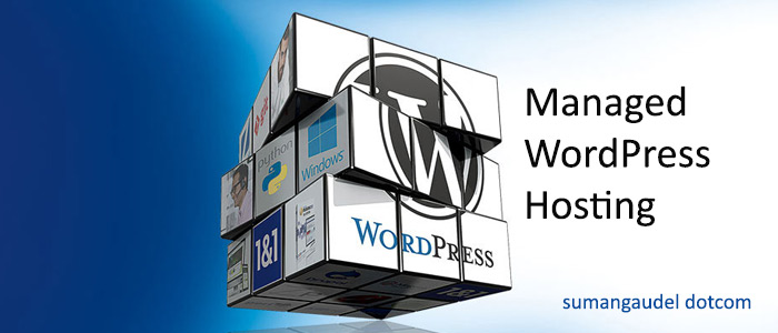 Managed WordPress Hosting