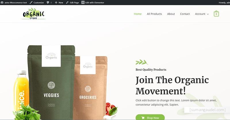 Free WooCommerce theme store screenshot