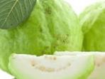 Manfaat tumbuhan herbal jambu biji