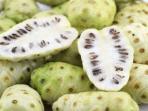 Manfaat tanaman herbal untuk kesehatan