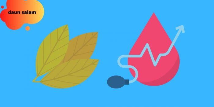 manfaat daun salam untuk darah tinggi