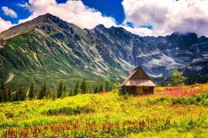 Hala Gąsienicowa – lato w Tatrach | Polska