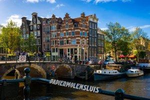 Blokada papierni | Amsterdam, Holandia