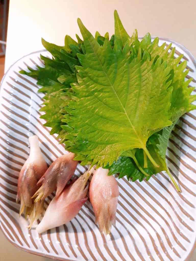 shiso_food