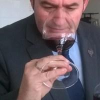 ¿Qué parámetros (que no ves) determinan el precio de un vino?