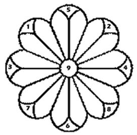 fiore-passi
