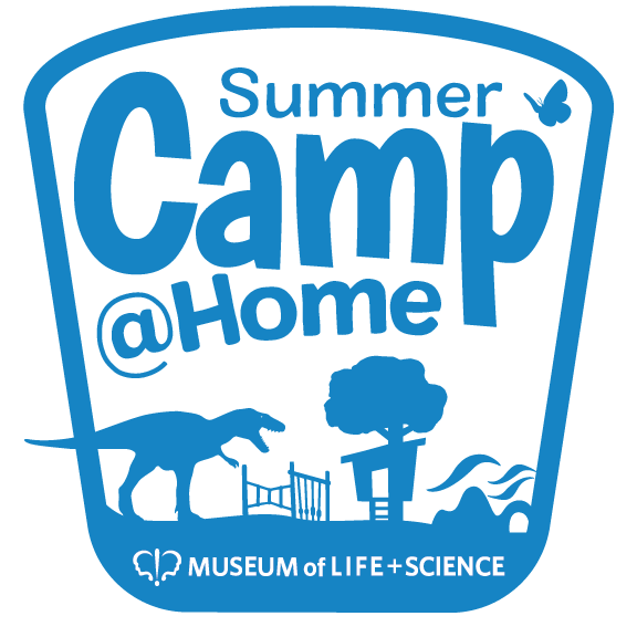 Camps@Home logo