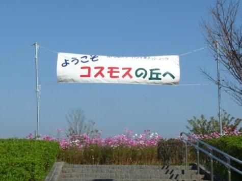 20111029-104736.jpg
