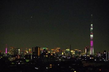 気が付くと左端の東京タワーも
