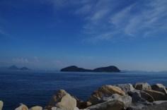 南隣の牛島