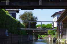 猫が橋を渡っています。