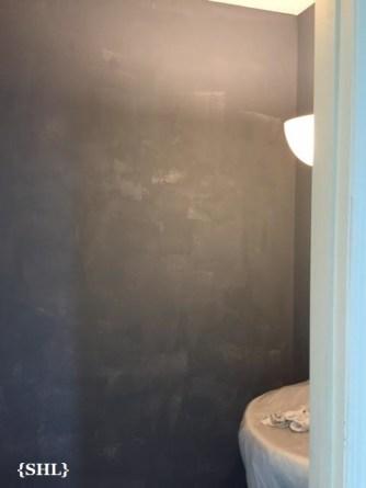SHL Powder Room Primer 1