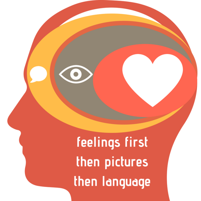feelings firstthen picturesthen language